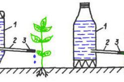 Система капельного полива из пластиковых бутылок
