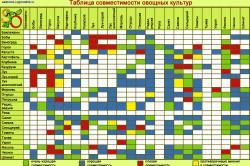 Таблица совместимости выращивания овощей