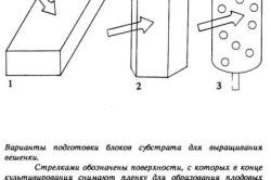 Создание блоков субстрата для выращивания вешенки