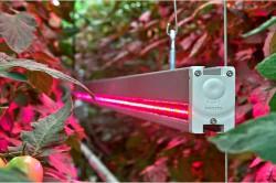 Светодиодная лампа в теплице