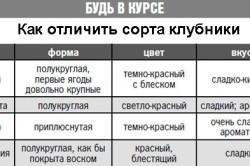 Таблица сортов клубники.