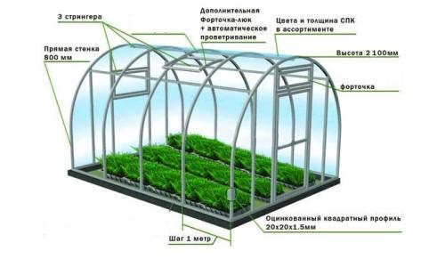 Схема устройства теплицы для выращивания петрушки