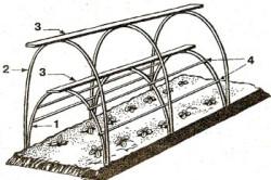 Туннель для выращивания огурцов.