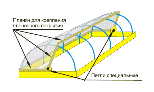 Схема теплицы для цветов