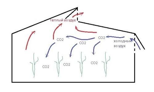 Схема вентиляции в теплице по Митлайдеру
