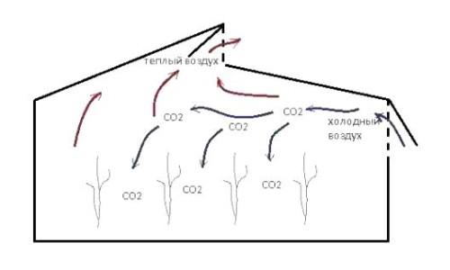 Схема воздухообмена в теплице Митлайдера.
