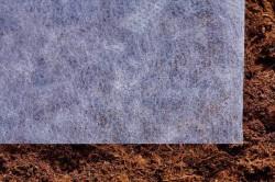Для того, чтобы защитить почву от бактерий из конденсата, накройте грядку лутрасилом.