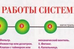 Принцип работы системы капельного полива
